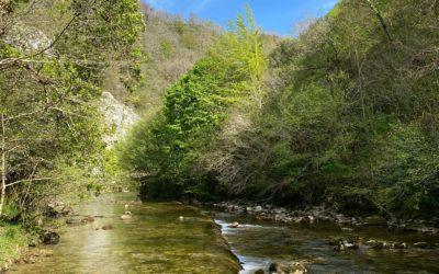 Ruta del río Dobra y Hoya de San Vicente